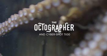 Sizce Bir Ahtapot Fotoğraf Çekebilir mi? – SONY CYBER-SHOT TX30