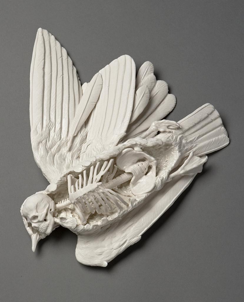 Crea.Tips - Sanat - Seramik Sanati - The New Age Of Ceramics - Kitap - HannahStouffer - Kate McDowell